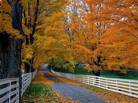 Beautiful Autumn Wallpapers Desktop by Wallpapers Autumn Scenery Desktop Wallpapers