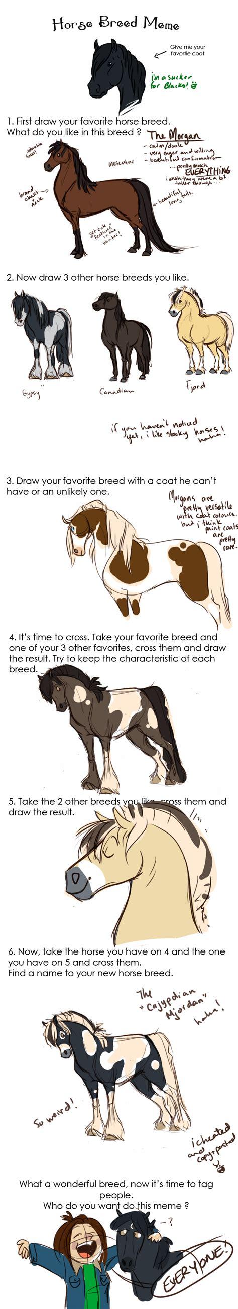 Horse Memes - meme horse 28 images funny horse memes high horse meme horse best of the best memes post a