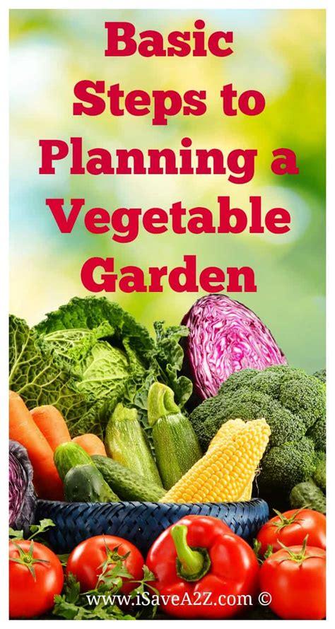 basic steps  planning  vegetable garden isaveazcom