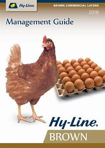 Hyline Brown Layer Egg Manual