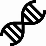 Biology Dna Clipart | 512 x 512  1kB