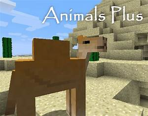 Animals Plus ★ v1.8 - Kiwis, camels and more! 🐫 🐢 (Updated ...