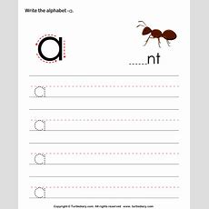 Write Letters In Lower Case A Z Worksheet 1  Turtle Diary
