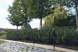 Cloture De Jardin : prix d 39 une cloture r sum des prix d 39 une cloture ~ Premium-room.com Idées de Décoration