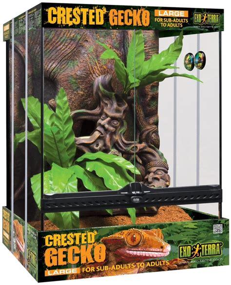 exo terra crested gecko kit xxcm reptile