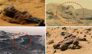 Evidence of life? 'Statues, tomb and dead alien discovered ...