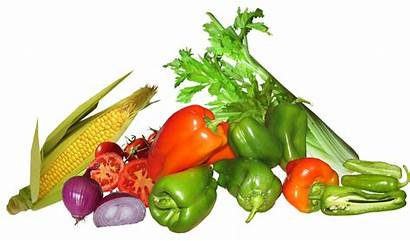 Vegetables Vegetable Healthy Cooking Transparent Pepper Produce