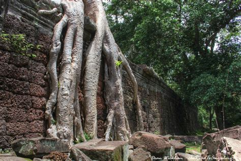 century wall photo journey through preah khan in angkor cambodia