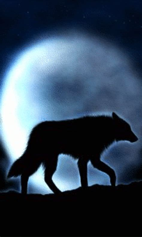Real Scary Wolf Wallpaper by Free Moving Wolf Screensavers Moon Wolf 480x800 Free