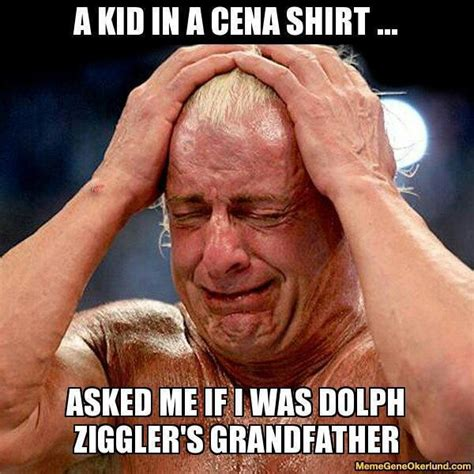Funny Wwe Memes - 352 best images about wwe funny memes p on pinterest dean o gorman aj lee and dean ambrose