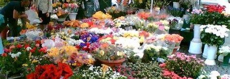 mercato dei fiori napoli blitz al mercato 171 nero 187 dei fiori 12 500 piante