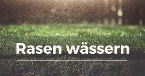 Gelbe Stellen Im Rasen : rasen sprengen cheap rasen wssern mit with rasen sprengen top finest more images with rasen ~ Markanthonyermac.com Haus und Dekorationen