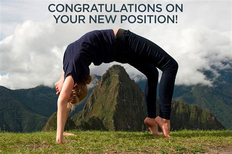 New Position by Congratulations On Your New Position Moldave Cook