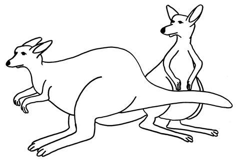 printable kangaroo coloring pages  kids