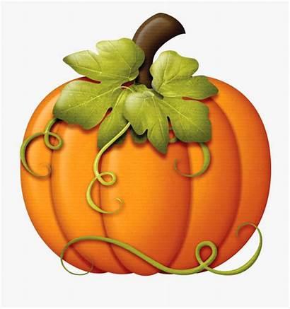 Harvest Fall Pumpkin Clipart Clip Vegitables Cartoon
