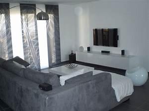 Salon Gris Blanc : salon gris et blanc photo 1 9 3511276 ~ Dallasstarsshop.com Idées de Décoration