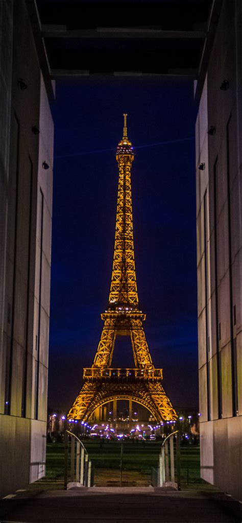eiffel tower gold lights pictures   images