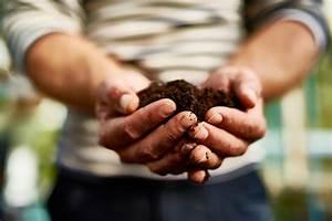 Gewächshaus Erde Wechseln : gew chshaus erde in diesem substrat f hlen sich die pflanzen wohl ~ Whattoseeinmadrid.com Haus und Dekorationen
