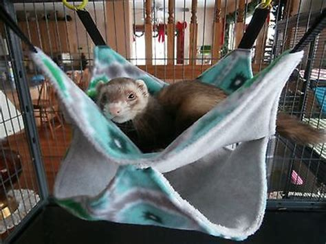 ferret beds and hammocks 670 best ferrets images on ferrets adorable