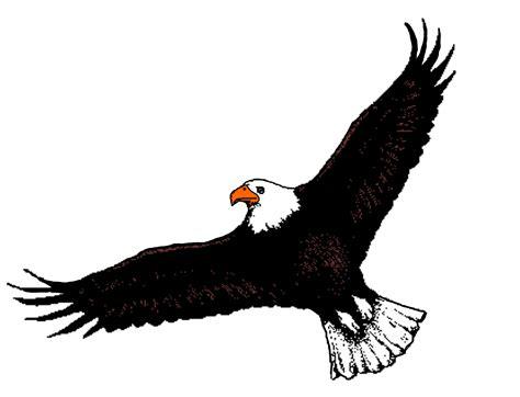 Bald Eagle Clip Bald Eagle Clipart Flight Clipart Pencil And In Color