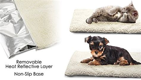 outdoor dog beds dog supplies warning save