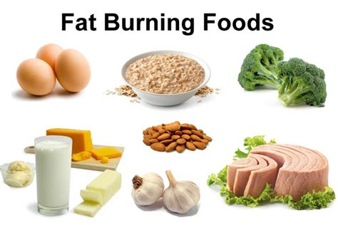 ve burning stomach slimming best burning foods to lose weight fast