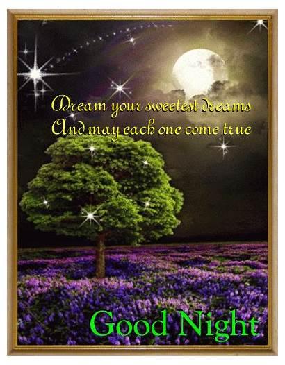 Dreams Sweet Night Goodnight Animated Sweetest Card