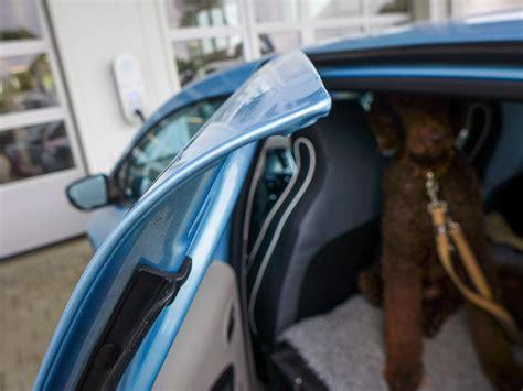 elektroauto für 10 jährige suche hundenetz hundegitter f 252 r zoe zoe zubeh 246 r