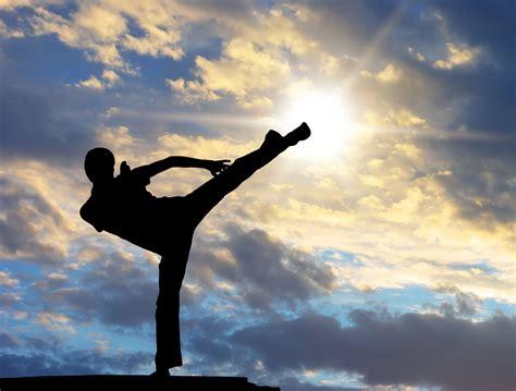 martial arts fitness karate instructor kick kicking training kid mma health boxing mental paralysis strength mitsubachi alone why coordination healthy