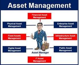 Asset Management Definition