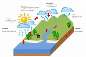 Water Cycle Diagram Australia