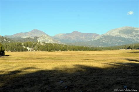 yosemite national park tioga pass  road  traveled
