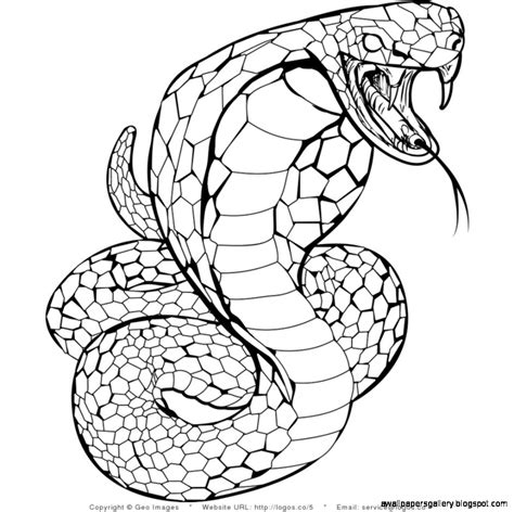 Snake Drawing For Kids Wallpapers Gallery
