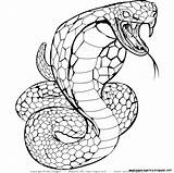Snake Coloring Pages Realistic Drawing Snakes Cobra Sheets Step Printable Highest Template Sketch Getdrawings Getcolorings sketch template