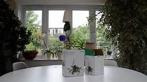 Boskke Sky Planter : birando boskke sky planter recycled planting guide youtube ~ Orissabook.com Haus und Dekorationen