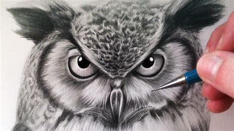 draw  owl  lethalchris drawing hildurko