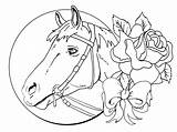 Coloring Pages Horse Adults Hard Horses Winner Adult Printable Cowgirl Books Getcolorings Magazine sketch template