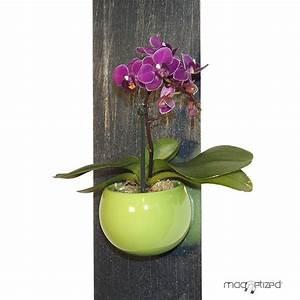 Cache Pot Magnétique : cache pot magn tique 8cm vert pomme mat riel mur v g ~ Teatrodelosmanantiales.com Idées de Décoration