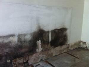 Wand Feuchtigkeit Messen : nach hochwasser schimmel gefahr nicht untersch tzen ~ Lizthompson.info Haus und Dekorationen