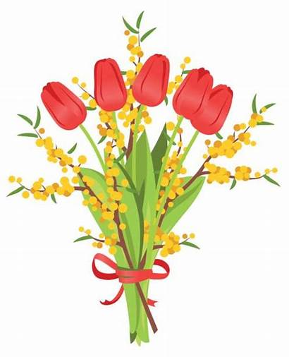 Bunch Flowers Bouquet Illustration Tulips Mimosa Clip