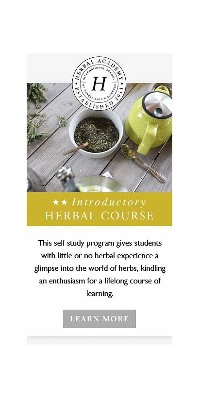 Herbal Herbs Medicinal Oil Course Academy Herb