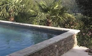 Margelle Piscine Grise : margelle de piscine en b ton massive vieux bassin gris ~ Melissatoandfro.com Idées de Décoration