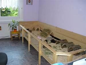 Meerschweinchen Gehege Ikea : wir ben tigen mehr platz eb nr 3 meerschweinchen haltung ~ Orissabook.com Haus und Dekorationen