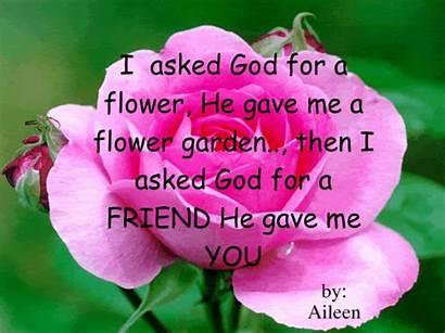 God Quotes Creator Fanpop Flowers Garden Rose