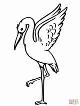 Stork Coloring Pages Storks Taking Printable Xxx Clipart Clipartbest 29kb 1600px Drawings 1200 Popular sketch template