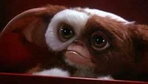 "Warner Bros negotiates the return of ""Gremlins"" - The show ..."