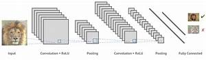 Machines that can see: Convolutional Neural Networks