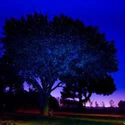 laser christmas lights sparkle magic outdoor illuminator