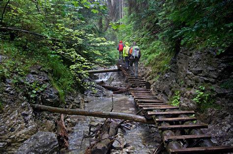temperate climate world tatra national park poland