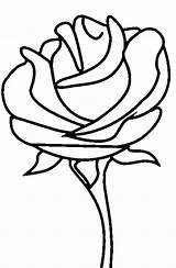 Coloring Roses Rose Printable sketch template